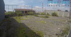 Lote de 500m2 para alquiler en Calle Blancos ID-180