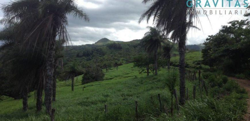 Finca de 95 Hectáreas en Abangares Guanacaste